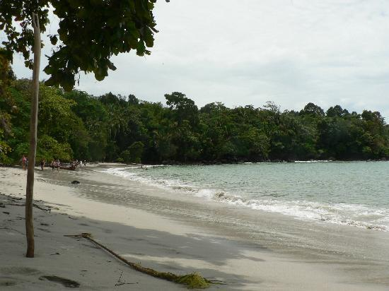 Hotel Casitas Eclipse : Playa de Manuel Antonio