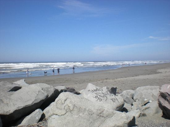 Ocean Shores, Waszyngton: the beach