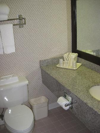 Comfort Inn Quantico: bathroom