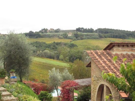 Il Bacio Agriturismo: The view from the window