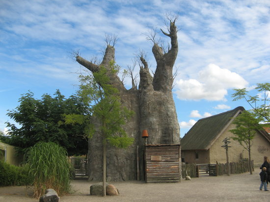Aalborg, Dinamarca: baobab you can walk in