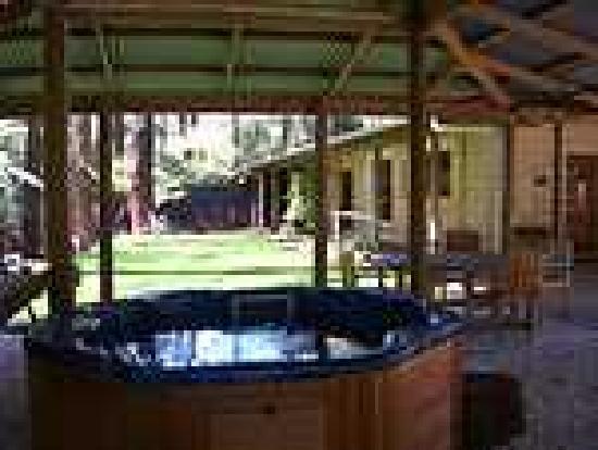 Fernglen Forest Retreat: The Lodge