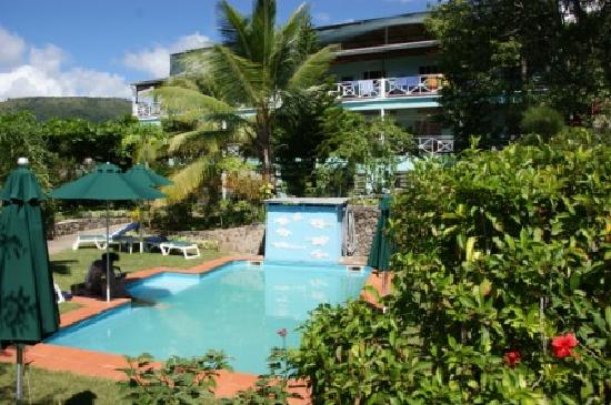 The Tamarind Tree Hotel & Restaurant : pool
