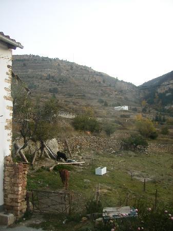 Hostal Restaurante El Portalico: Vistas de la habitación