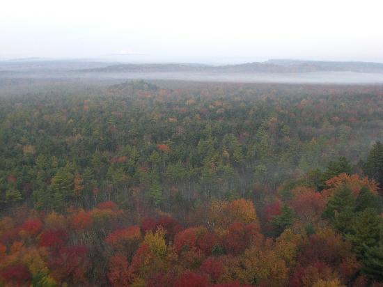 Foliage view from 17th floorof One Bedroom Suite at Grand Pequot Tower