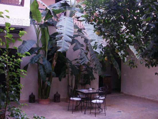 patio riad picture of riad l 39 oiseau du paradis. Black Bedroom Furniture Sets. Home Design Ideas
