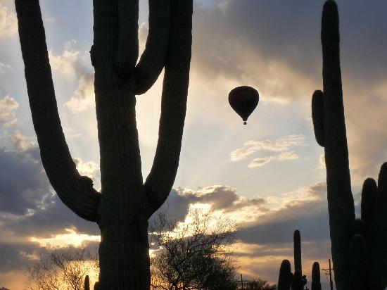 توسن, Arizona: Fleur de Tucson Balloon Tours, Tucson Sunrise