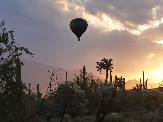 توسن, Arizona: Fleur de Tucson Balloon Rides