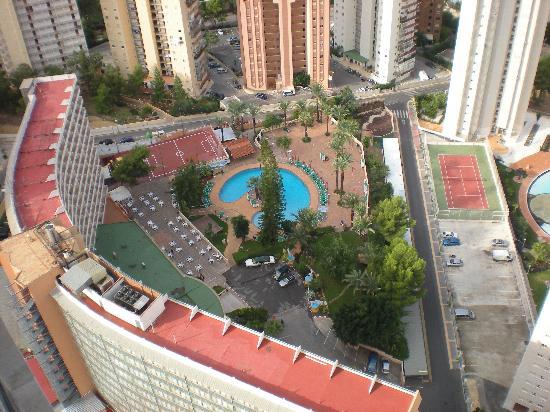 Don Jorge Apartamentos View Of Palm Beach Hotel Pool From Balcony