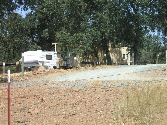 Jamestown, Californien: Hello car hidden in trees used in Little House on the Prairie