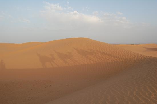 Ouarzazate, Marokko: désert
