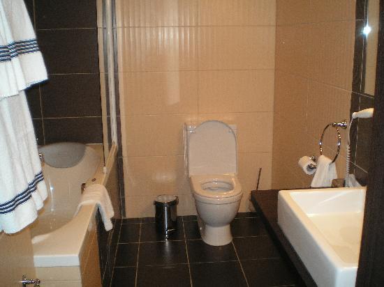 Truskavets, Ukraine: bathroom