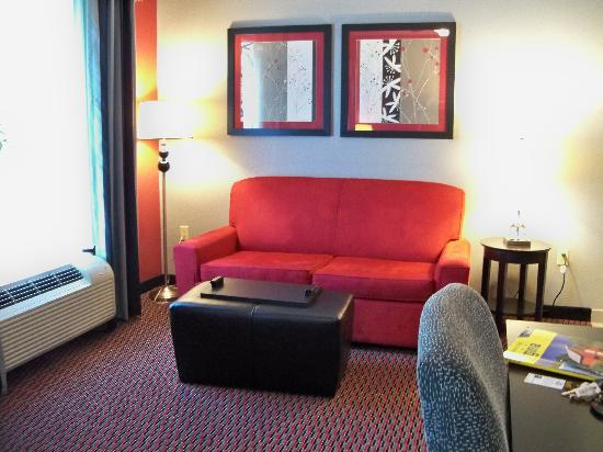 Homewood Suites by Hilton Leesburg: Couch and Ottoman
