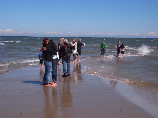 Grenen Skagen : faszinierende, gegenläufige Wellenbewegung