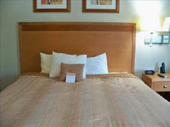 Candlewood Suites Winchester: Bed