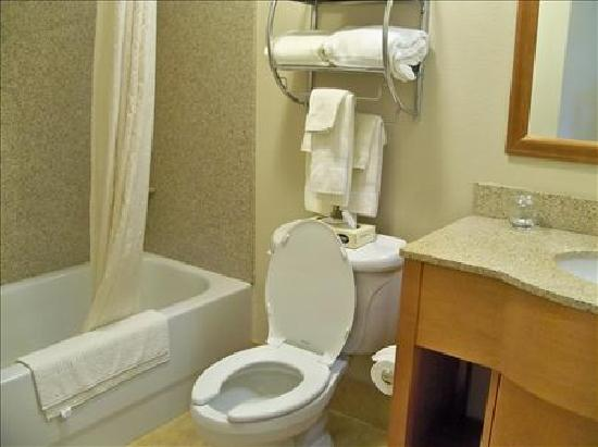 Candlewood Suites Winchester: Bathroom