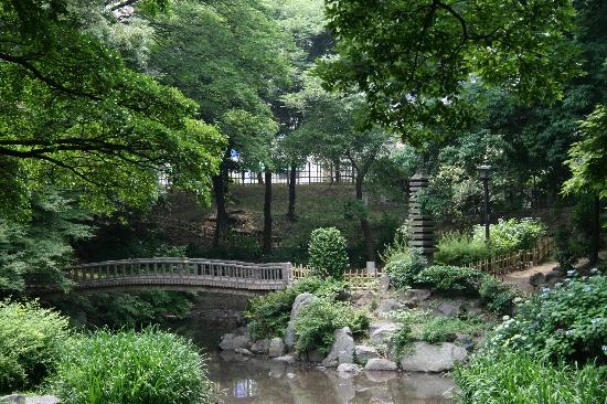 Marutame : Small traditional Japanese garden behind nearby office tower.