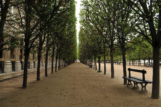 Photo Tours In Paris: Park next to the castle