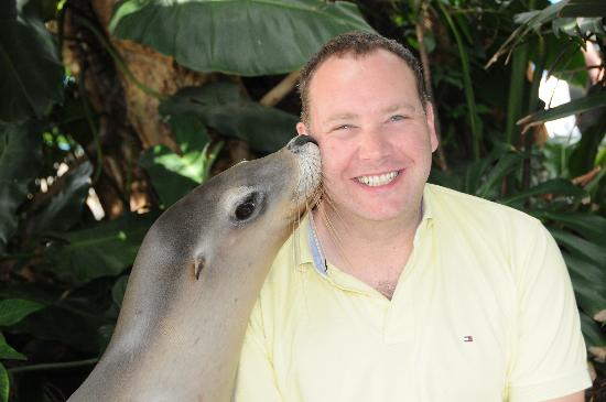 Coffs Harbour, Australien: I kissed a seal and I liked it ...
