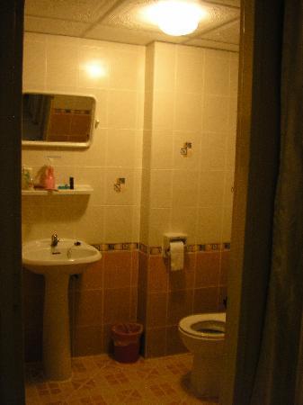 Vabua Asotel: Clean basic toilet
