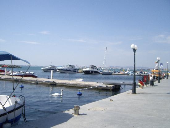 Slantchev Briag (Sunny Beach), Bulgarie : VLAS