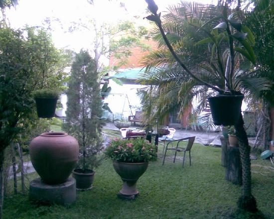 Chaba House: LOVELY SMALL GARDEN...