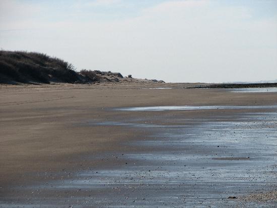 Pehuén-Co, Argentina: Zona de playa en invierno, en verano se llena
