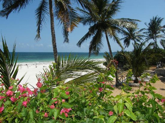 Baobab Sea Lodge : la plage