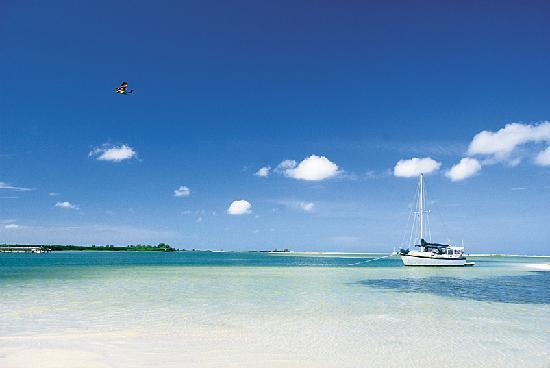 ฟลอริด้า: Shell Island
