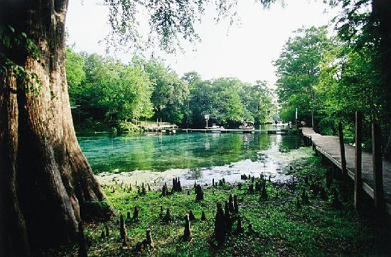 Florida: Suwannee River