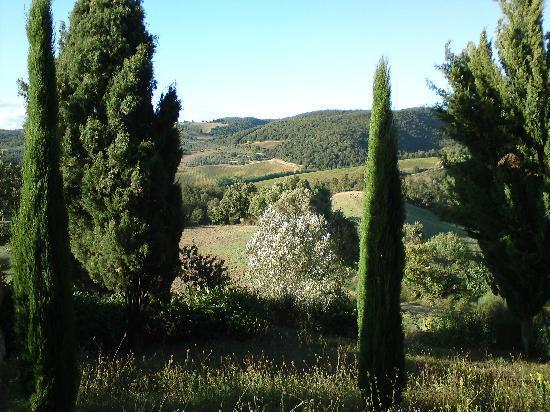 Zampugna Agriturismo: View from bedroom , Appt Alloro