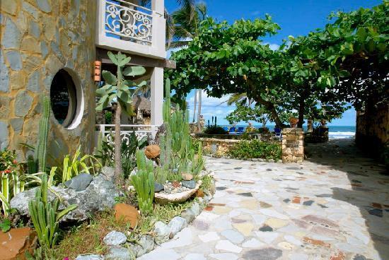 Hotel El Magnifico : passage to the ocean