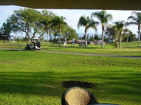Paniolo Greens Resort: my view from lanai