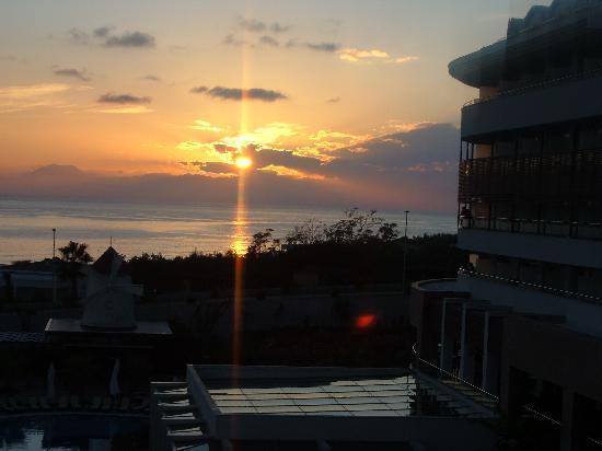 알바 로얄 호텔 사진
