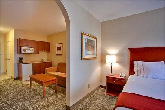 Holiday Inn Express Hotel Suites Edmonton South King Or Queen Bed Pullout Sofa
