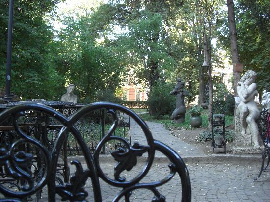 Toba & Co: Blick in den Garten/Park 2
