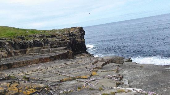 Banks of Orkney: He pulled in at least 5 fish on one line, including a big tasty pollock we ate