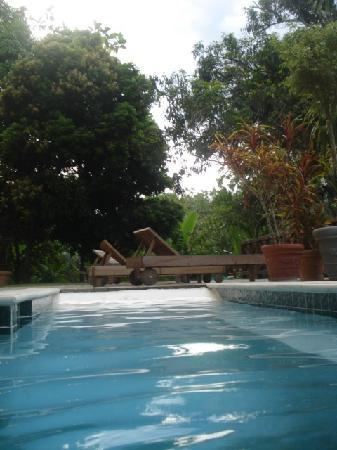 Mahogany Hall Boutique Resort: another pool view