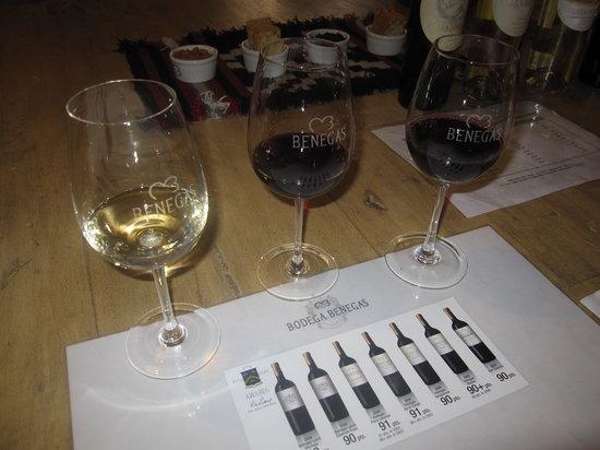 Gustavo Delucchi Wine Tours : Benegas Lynch degustation
