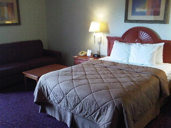 Comfort Inn University Center: Room