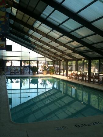 Comfort Inn University Center: Swimming Pool