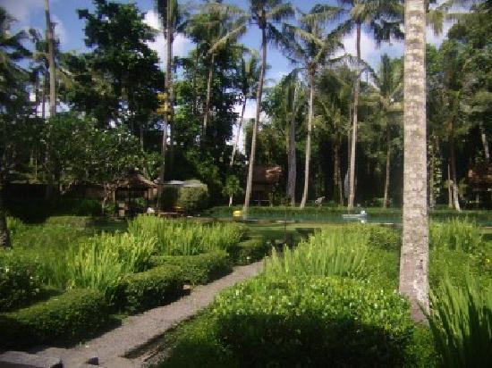 Puri Tupai: Grounds