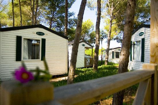 Las Palmeras Camping: Bungalows Park