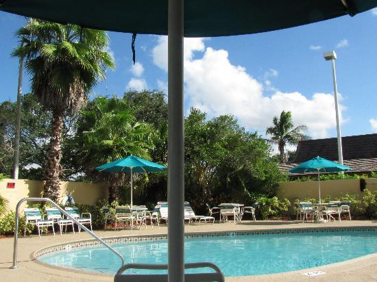 La Quinta Inn & Suites Coral Springs South: la piscine de l'hotel