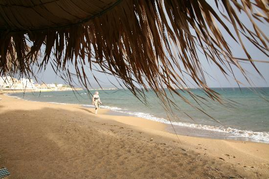 Ammos Hotel: La plage