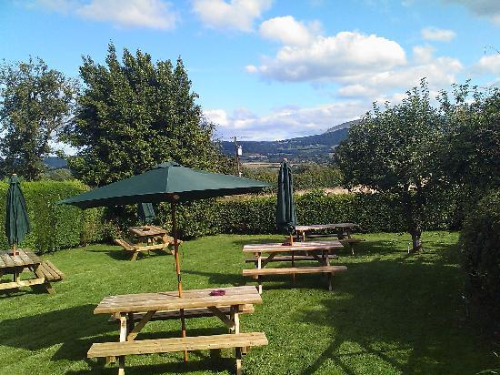 The Radnor Arms: The Garden Views