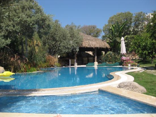 Sandima 37 Suites Hotel: Lovely quite pool