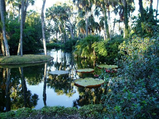 Bok Tower Gardens: Tranquility