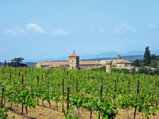 Pouzolles, France: la vue aux vignobles du jardin
