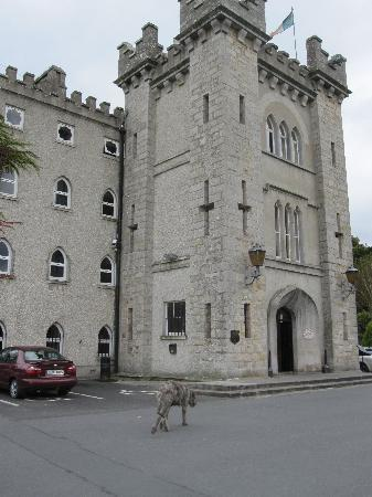 Kingscourt, Irlanda: Castle Hotel main entrance